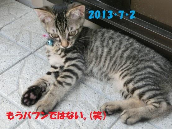 20140516-08.jpg