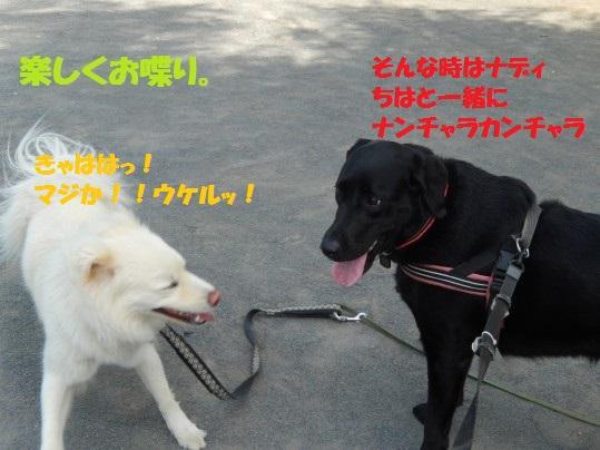 ヒースといっしょ1-03