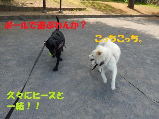 ヒースといっしょ1-02