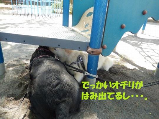 ヒースといっしょ1-10