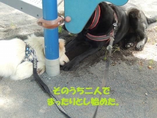 ヒースといっしょ1-09