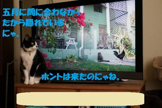 いわごう1-03