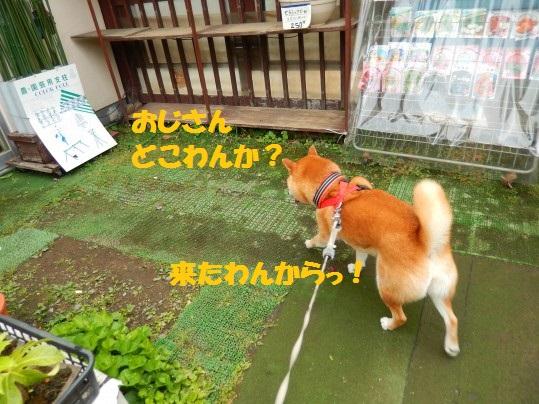 20140605-01.jpg