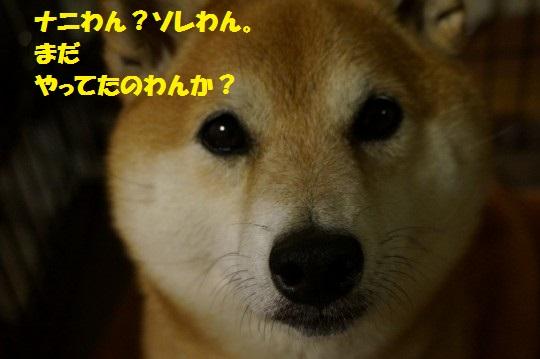 20140607-12.jpg