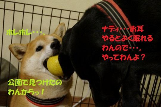 20140612-02.jpg