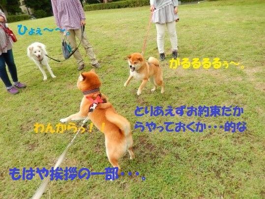 20140614-08.jpg