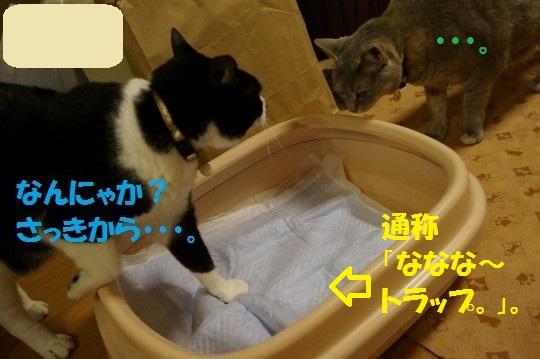 ななかく1-07