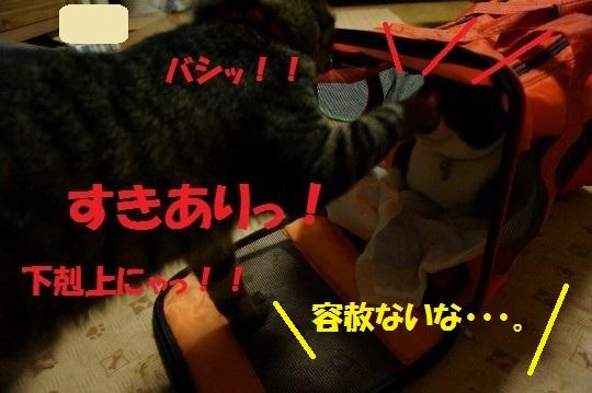 ななかく1-06