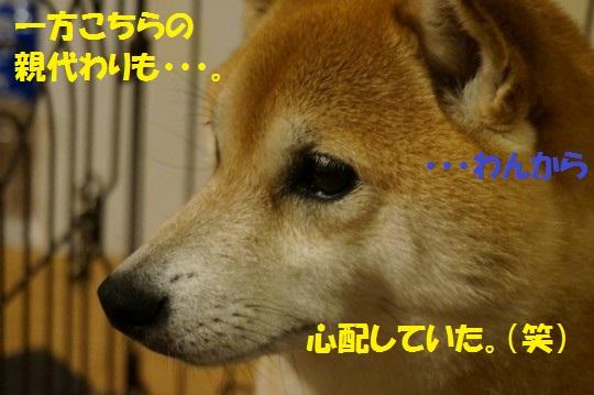 ななかく1-12