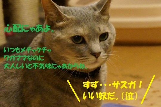 ななかく1-11