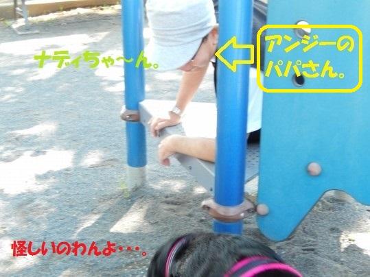 ばんがい1-03