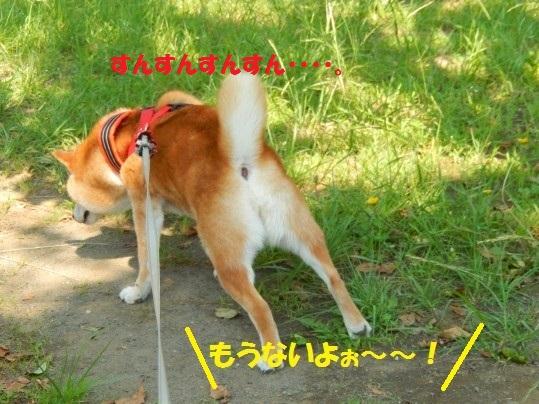 ななめ1-04