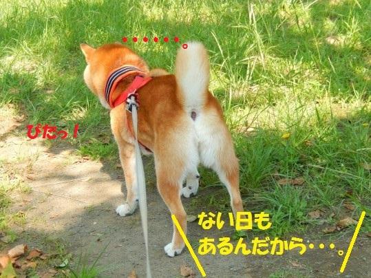 ななめ1-05