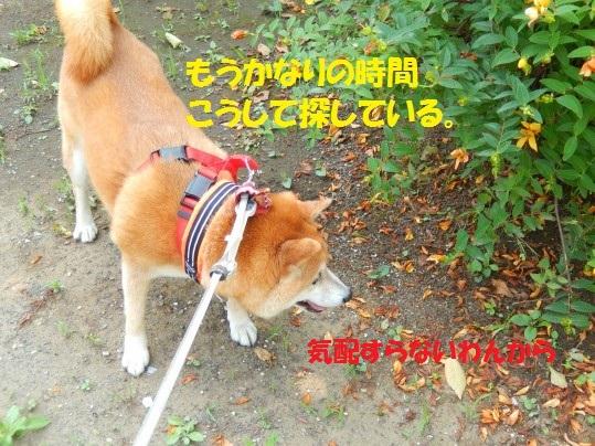 ななめ1-03