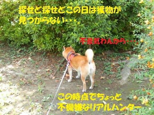 ななめ1-01