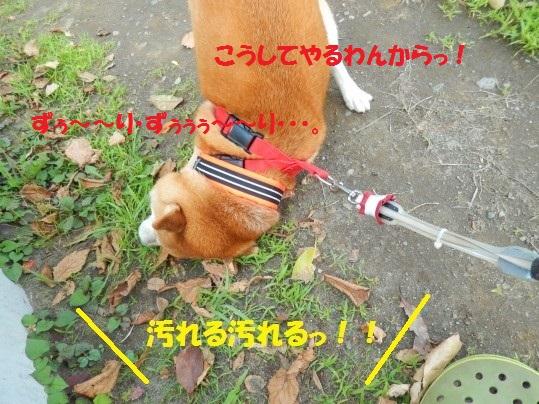 ななめ1-08