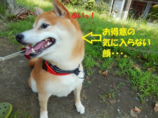ななめ1-09