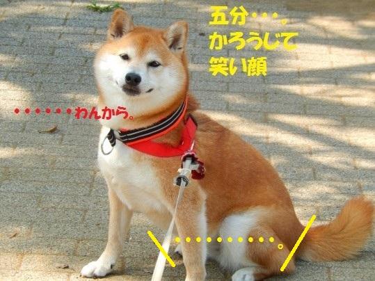 ななめ1-15