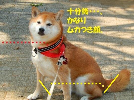 ななめ1-16