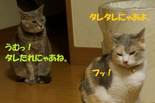 20140623-08.jpg