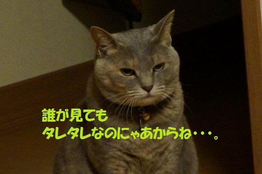 20140623-09.jpg