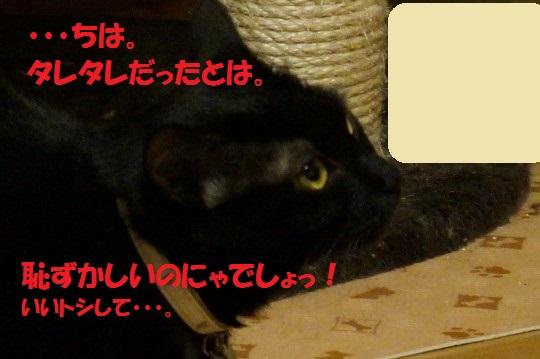 20140623-12.jpg