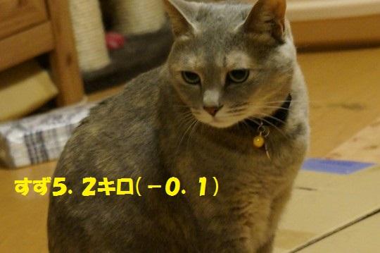 20140624-05.jpg