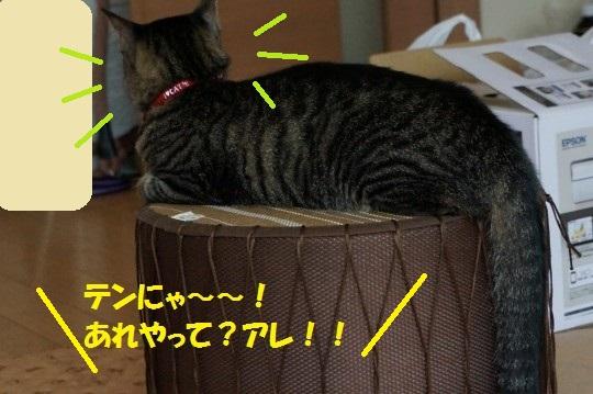20140702-01.jpg