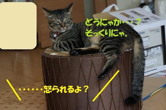 20140702-04.jpg