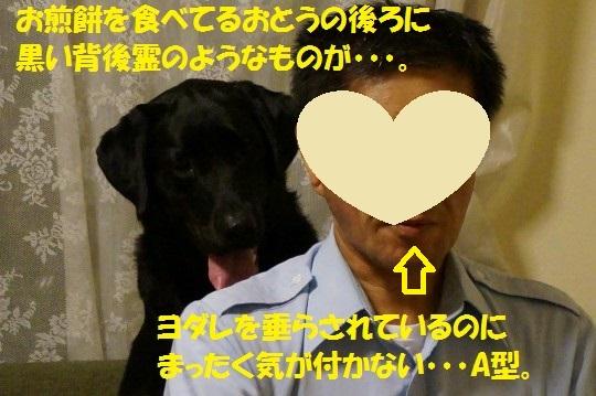 20140704-01.jpg