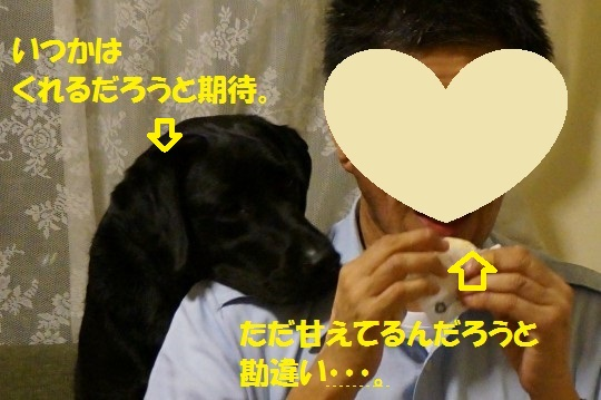 20140704-03.jpg