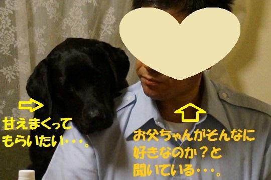 20140704-04.jpg