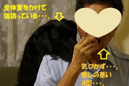 20140704-06.jpg