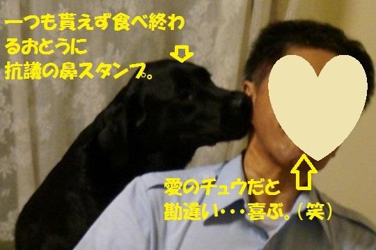 20140704-07.jpg