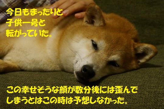 20140707-01.jpg