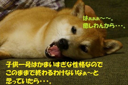 20140707-02.jpg
