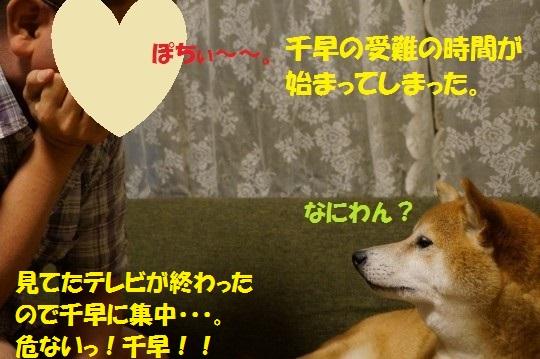 20140707-03.jpg
