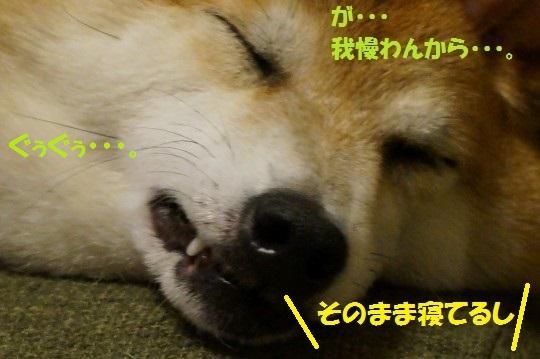 20140707-13.jpg