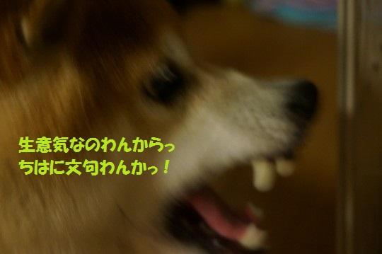 20140719-09.jpg