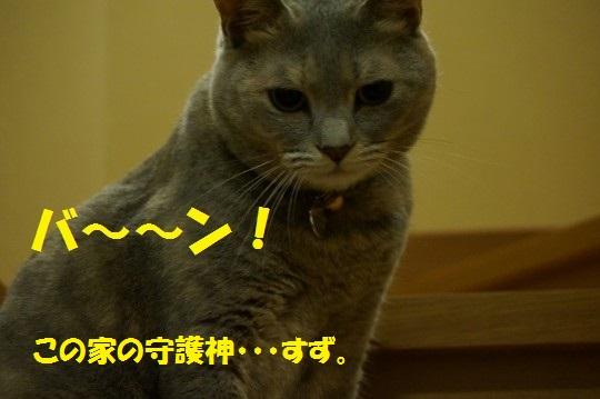 20140725-02.jpg