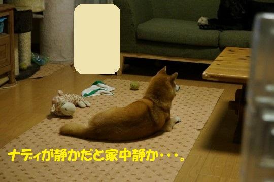 20140806-02.jpg