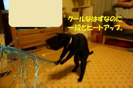 20140806-09.jpg
