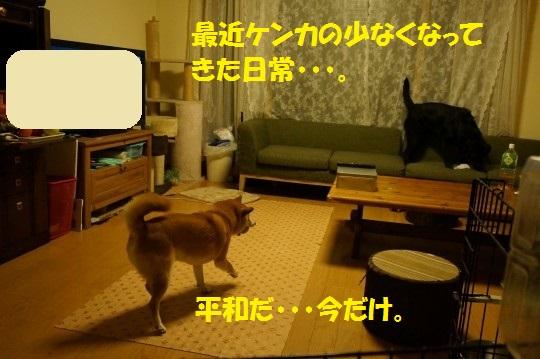 20140807-01.jpg