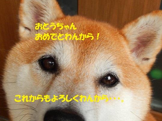 20140814-00.jpg