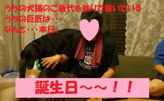20140814-02.jpg