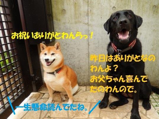 20140815-01.jpg