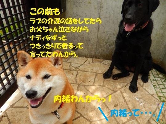 20140815-06.jpg