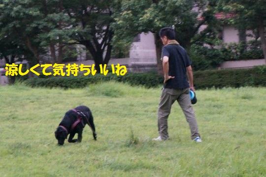 20140819-03.jpg