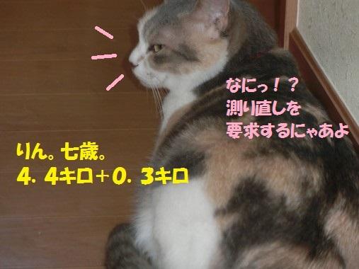 測定2-003