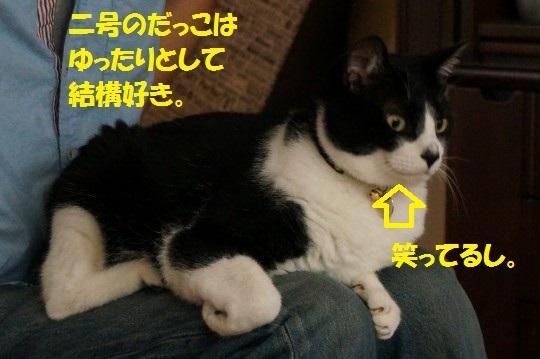 20140904-09.jpg